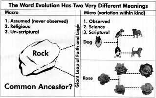 Should the concept of creation science AND the theory of evolution science be taught in public schools?